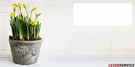 Leserservice Geschenkkarte Frühlingsblume