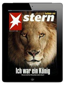 Stern Digital