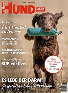 Der Hund Abo beim Leserservice