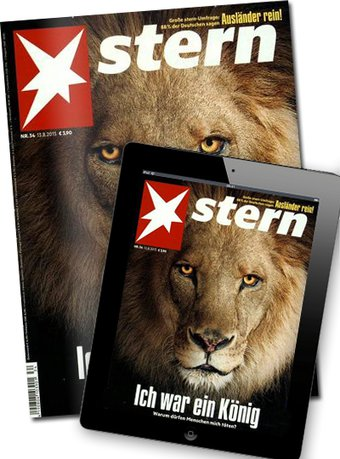 Stern + Digital-Upgrade