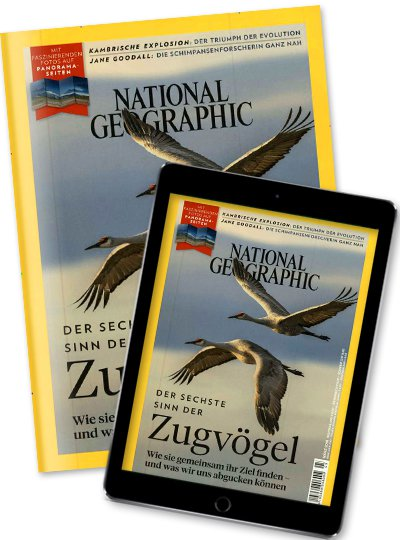 NATIONAL GEOGRAPHIC Kombi Print +Digital